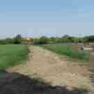 friedhof_20120503014